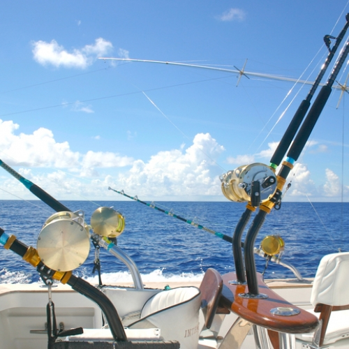 Fishing charter packages for Block island fishing charters