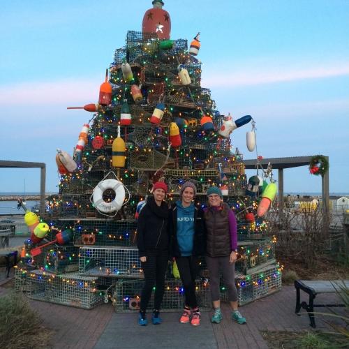 Island Christmas Tree.Christmas On Block Island
